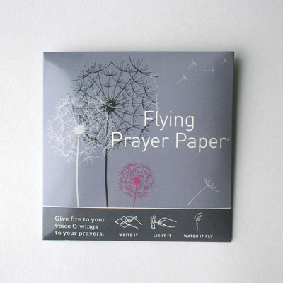 Dandelion Prayer Mini Kit